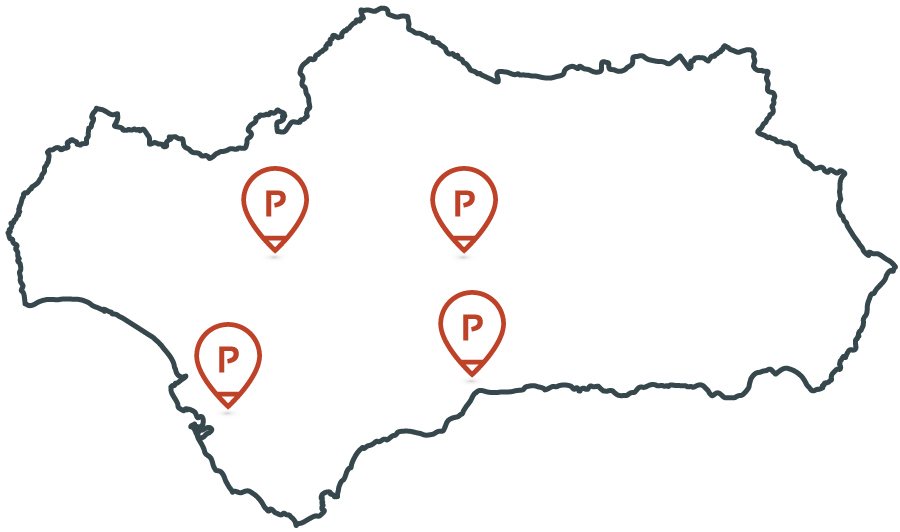 Proyectanda Agencia digital Andaluza - Lucena - Sevilla - Cadiz - Malaga